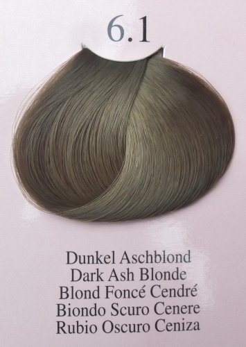 Variation Color 1 + 1,5 Dunkel Aschblond 6.1